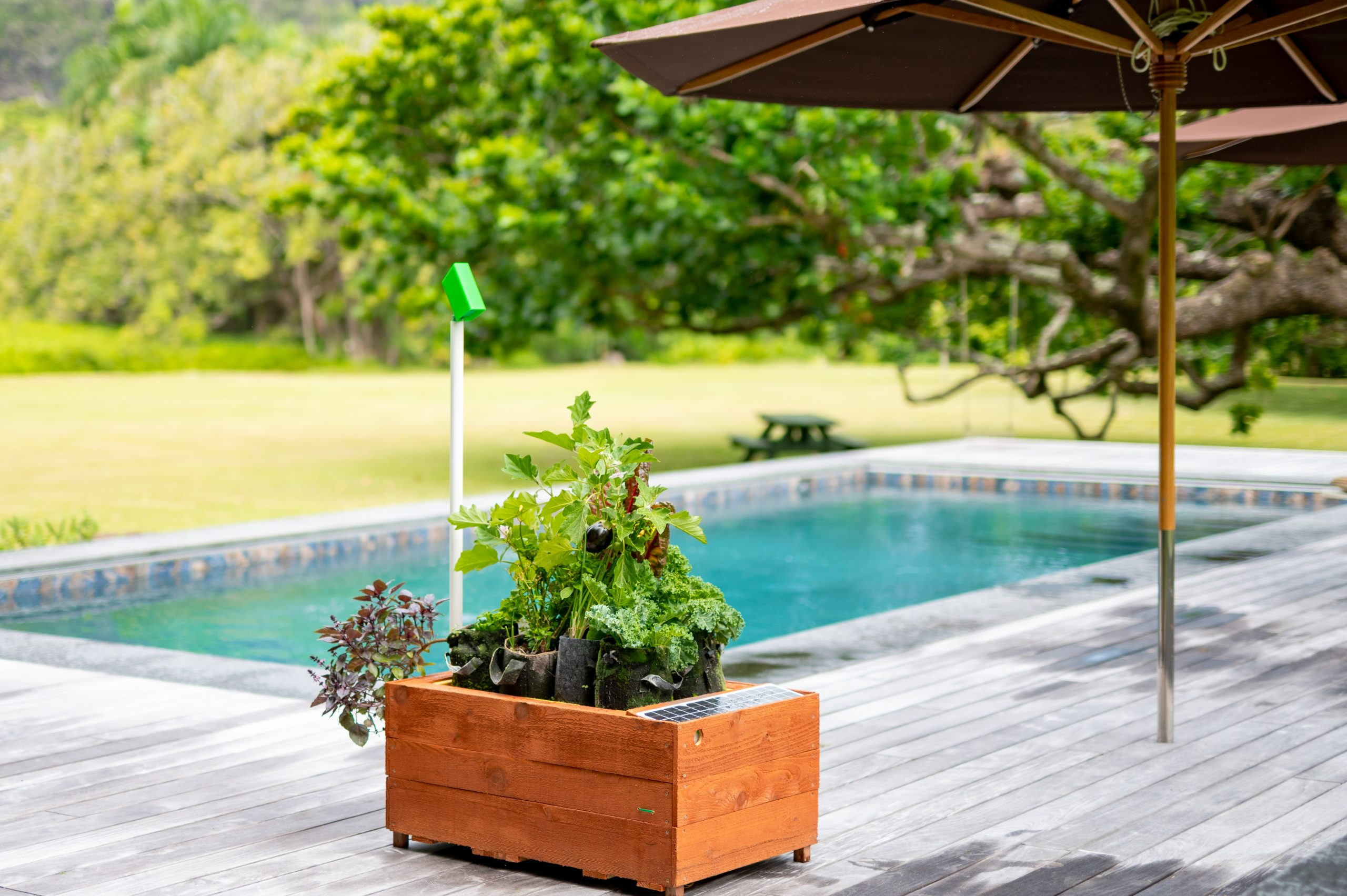 Photo of GrowBot in front of a swimming pool