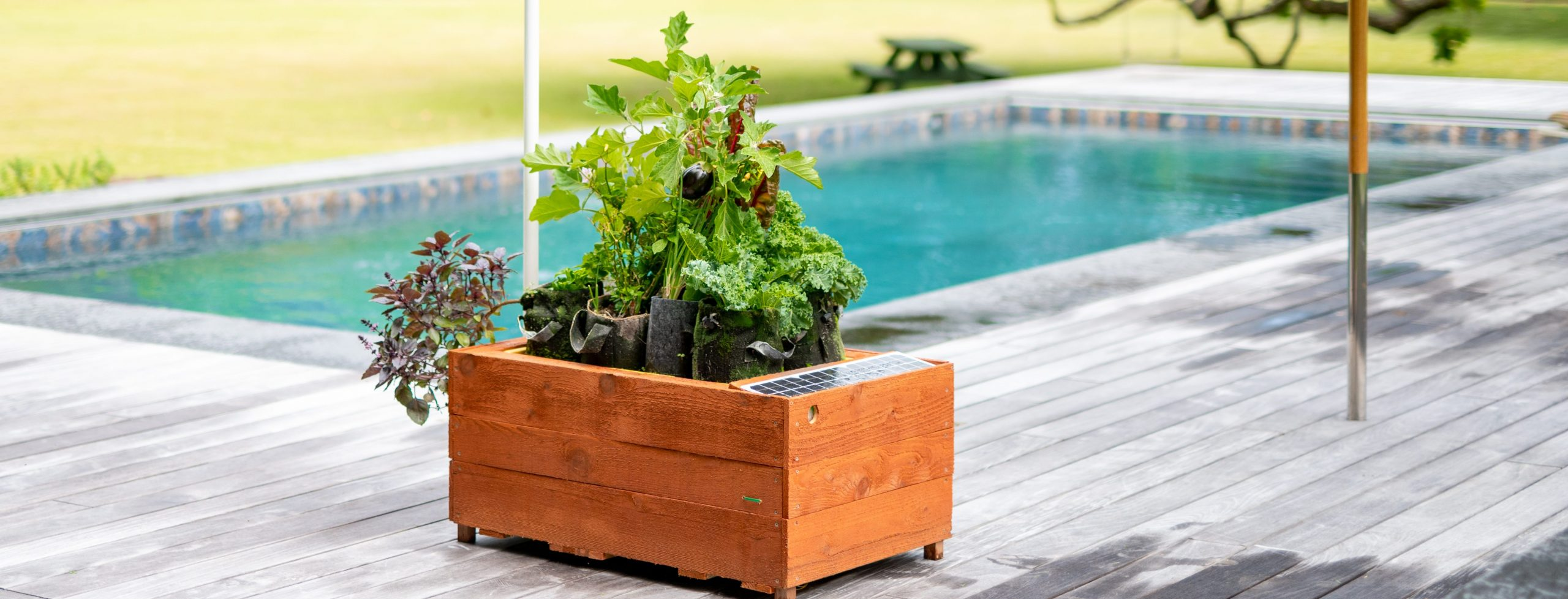 GrowBot by the poolside