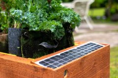 image of GrowBot with solar panel