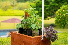 GrowBot, a robot that grows a garden, automatically